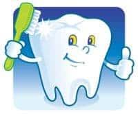 accepts dental insurance burien
